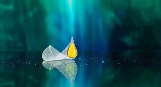 Titelbild PlakatBlatt Öl